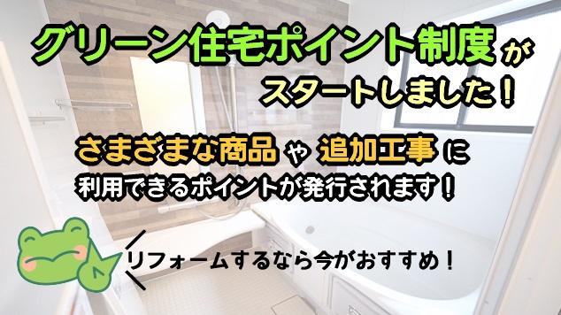 greenwada14.jpg