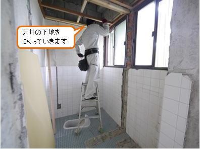 ref_sris_19.jpg