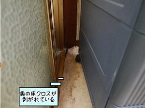 ref_zi_18.jpg