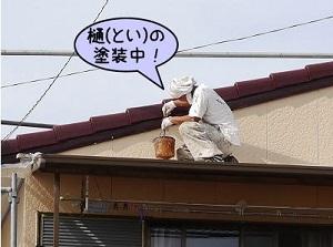ref_zi_23.jpg