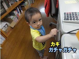 wadasekou201509046.jpg