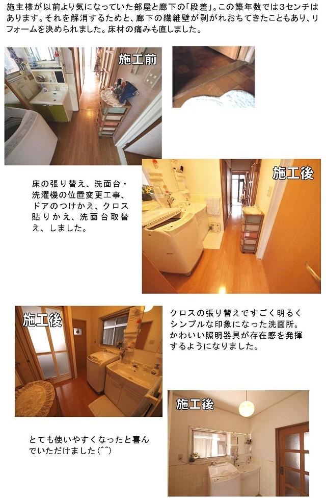 wadazirei_reformbs5.jpg